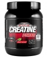 ActivLab Creatine Powder Super, 600 гр