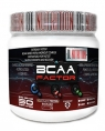 DL Nutrition BCAA Factor, 500 гр