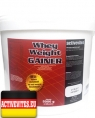 Activevites Whey Weight Gainer, 5000 гр
