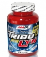 Amix Nutrition Tribu-Lyn 40%, 220 кап